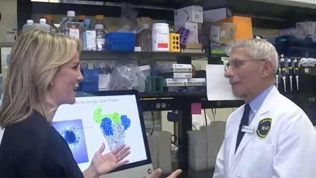 专家:棘突蛋白是病毒疫苗研发关键