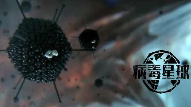 BBC纪录片详解细胞如何对战病毒