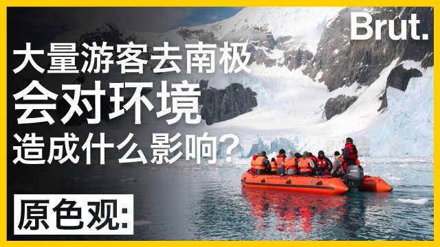 大量游客去南极会对环境有何影响?