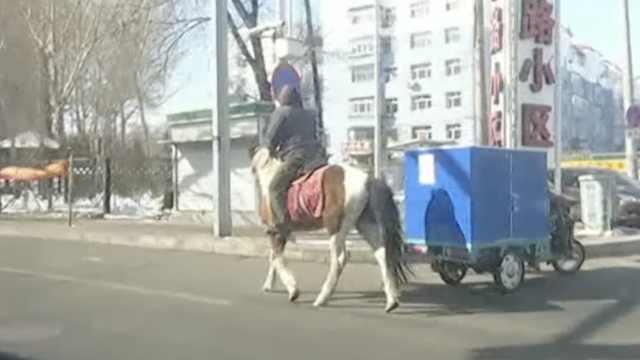 朋友不会扫码出小区,他骑马帮买菜
