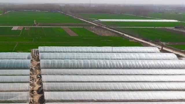 「春耕进行时(四)」章丘区张家林村:现代农业,精准扶贫
