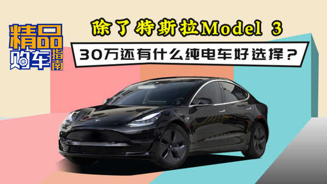30万除了Model 3还有什么纯电车选择?