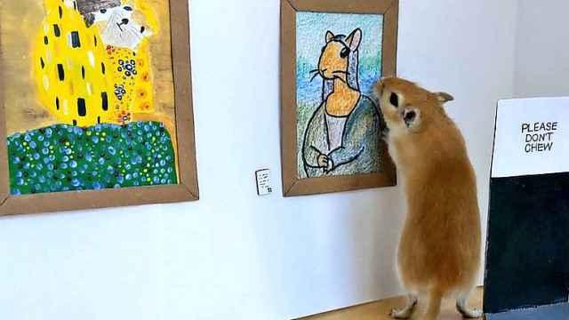 可爱!艺术家在隔离中创作沙鼠迷你美术馆