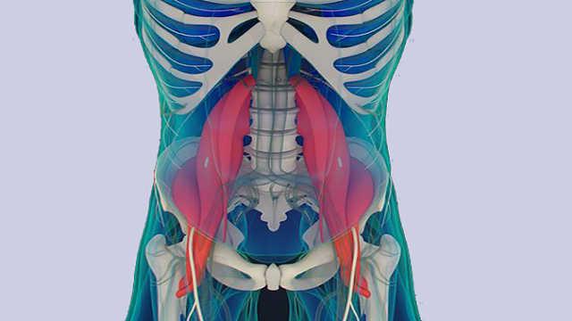 第11节:腰椎后关节紊乱的诊断要点