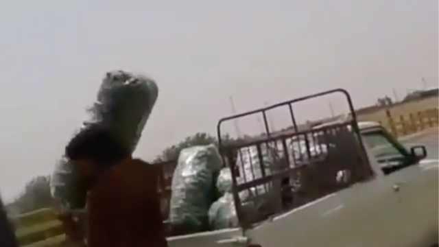 因疫情滞销,伊朗农民将大量黄瓜扔河里,番茄洋葱也受影响