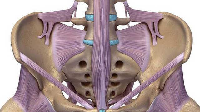 第4节:骶尾痛的辅助检查