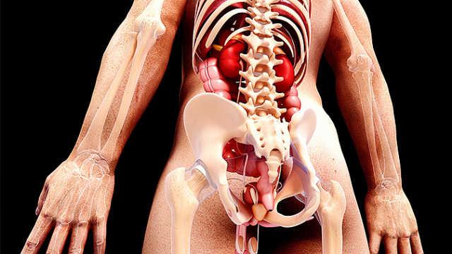第10节:骶尾痛的中医治疗要点