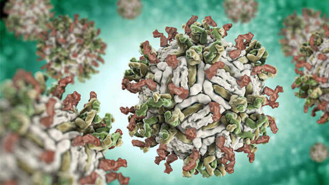 第8节:如何正确诊断传染性单核细胞增多症?