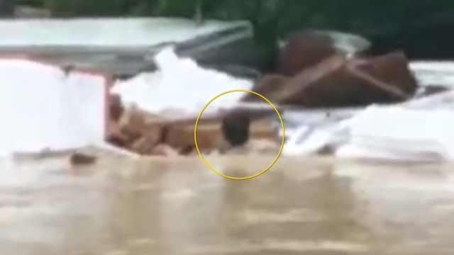 广州暴雨路面积水,货车司机勇救行人不幸遇难