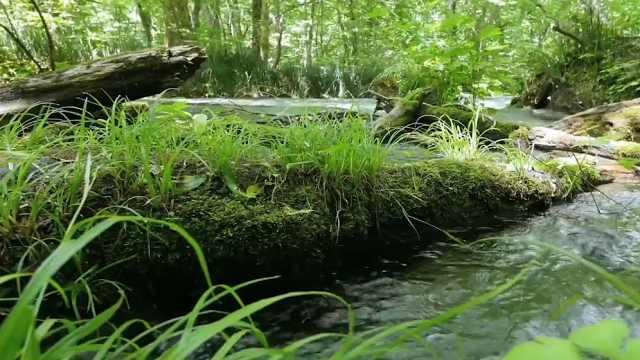 水土保持这些事儿   水土流失综合治理