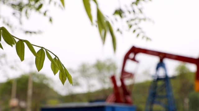 长庆油田陇东油区封堵油水井500余口,为生态环境让步