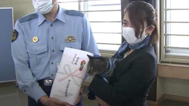 日本警察局给猫咪开表彰大会:送奖状猫粮,嘉奖其见义勇为