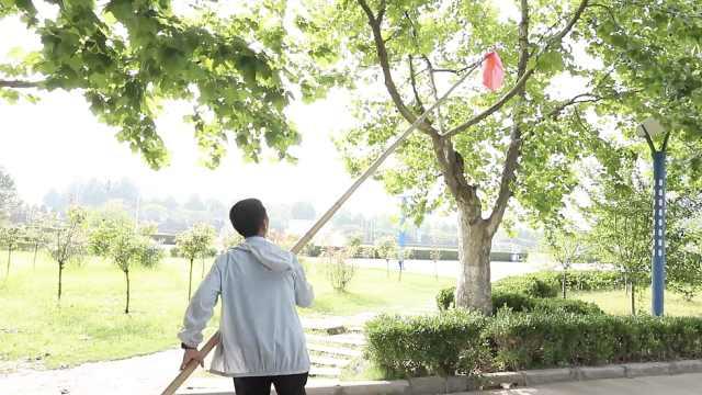 大爷扛5米竹竿满校园赶知了,怕影响考生英语听