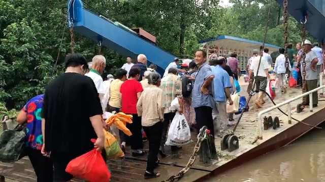 孤岛大撤离丨2272人撤离江心洲,老人故土难离带家禽才肯走