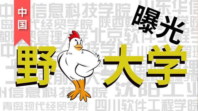 中国有哪些野鸡大学?
