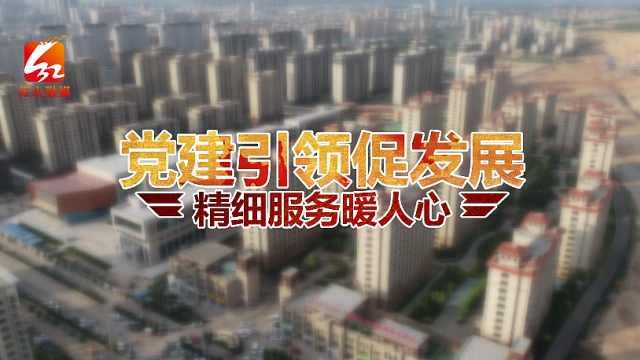 赤峰市红山区南山社区:党建引领促发展,精细服务暖人心