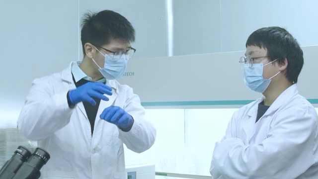 研究者称石墨烯不是治癌神药:从研究到临床还有很长一段路