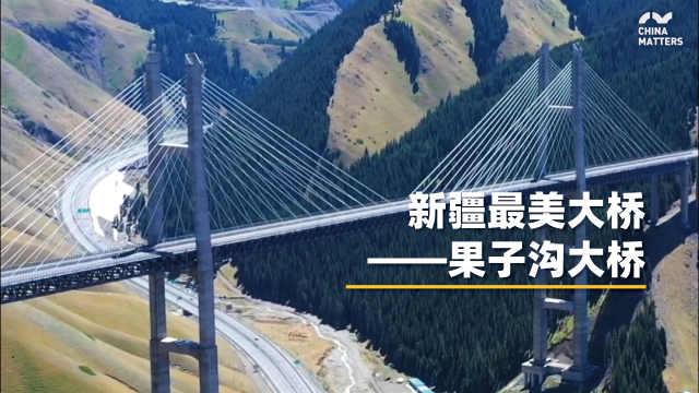 """新疆第一桥,果子g大桥!一定要去看一看的""""最"""