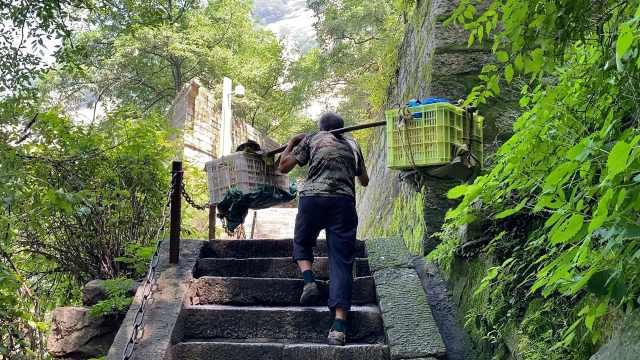 华山6旬挑山工挑90斤鸡蛋,爬25里山路挣90元