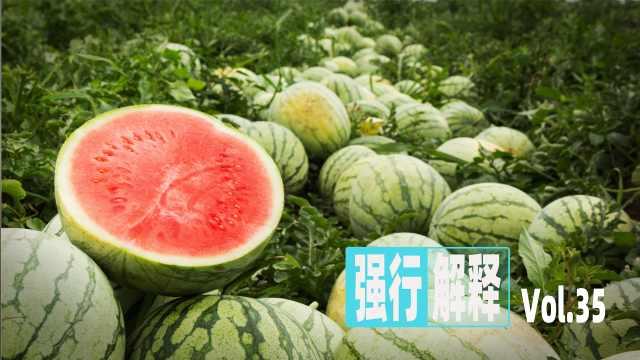 """中国人到底多爱""""吃瓜""""?一年吃掉全球七成"""