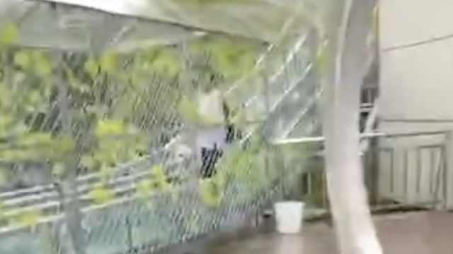 辽宁一景区玻璃栈道发生事故,多名游客受伤被