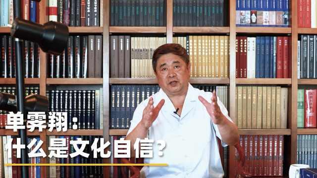 故宫博物院前院长单霁翔:中国人凭什么充满文化自信?