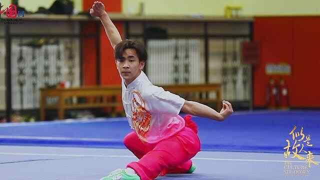 中国武术的拳到底有多炫