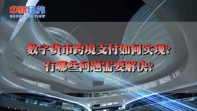 刘东民:理论上数字货币跨境支付成本可降低到接近零