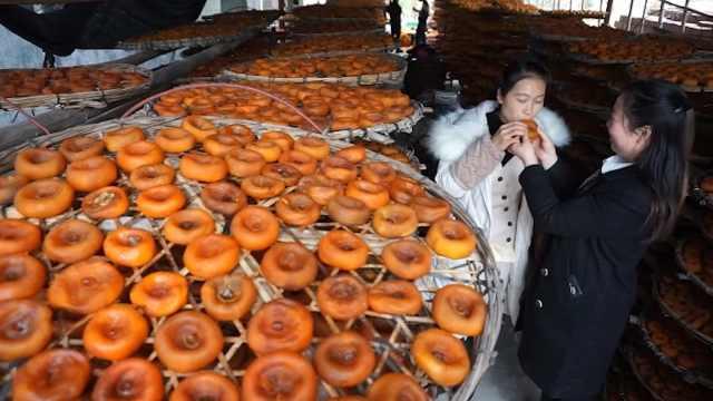 柿饼养成记:手捏加暴晒,需被蹂躏二十天!