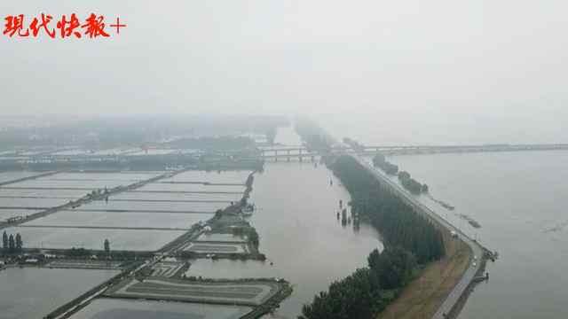 洪水红色预警下的石臼湖:水平面逼近堤岸,沿线24小时巡查