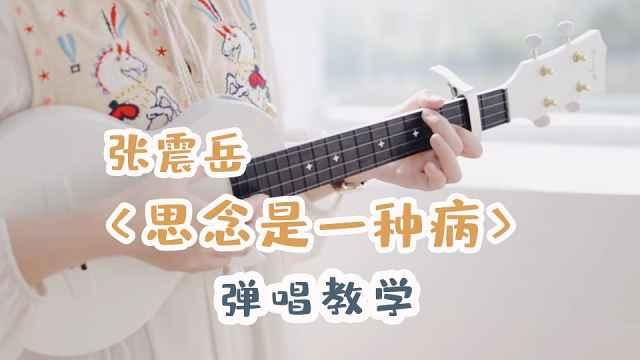 张震岳《思念是一种病》弹唱教学