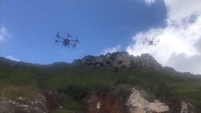 首次使用无人机!云南飞播造林播撒1200亩,树种10多个