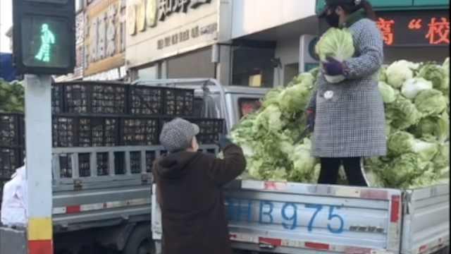 东北又到囤菜季!老太买300斤白菜雇车拉:去年200斤没吃够