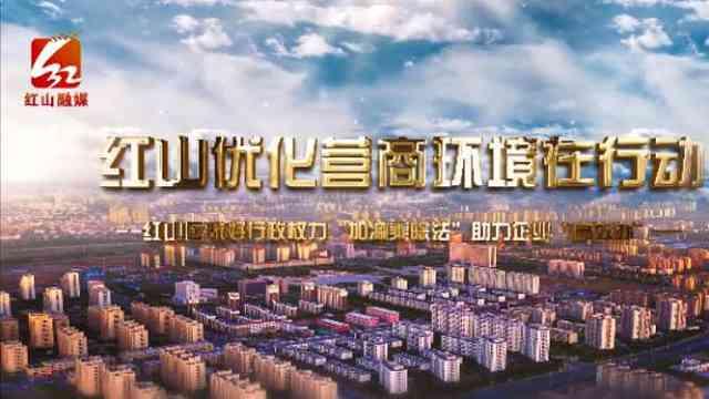 """赤峰市红山区做好行政权力""""加减乘除法""""助力企业""""高效办"""""""