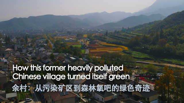 余村:从污染矿区到森林氧吧的绿色奇迹