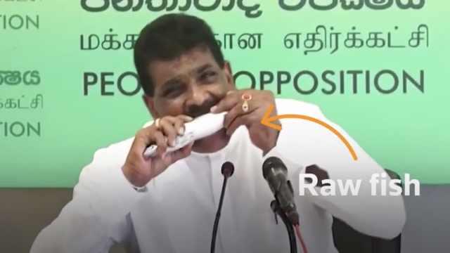 为鼓励鱼类销售,斯里兰卡议员在新闻发布会上当场吃生鱼