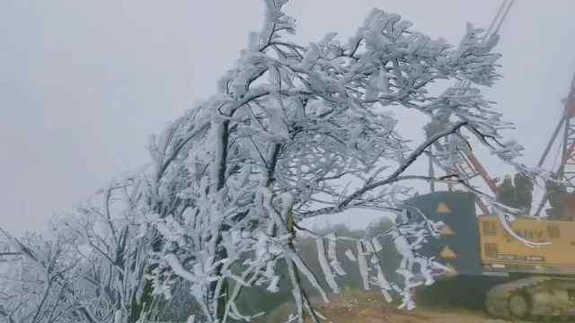 桐梓县黄莲坝村黄莲坝组,今天冻起来了