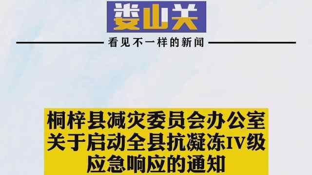 桐梓县减灾委员会办公室关于启动全县抗凝冻IV级应急响应通知