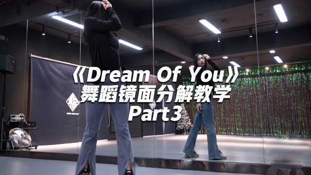 金请夏《Dream Of You》舞蹈镜面分解教学Part3
