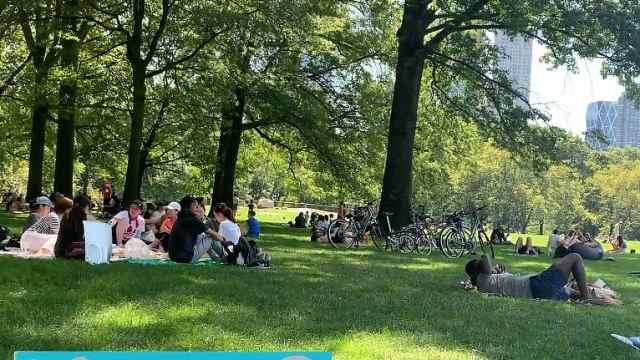 为啥美国确诊多?纽约公园全是人!