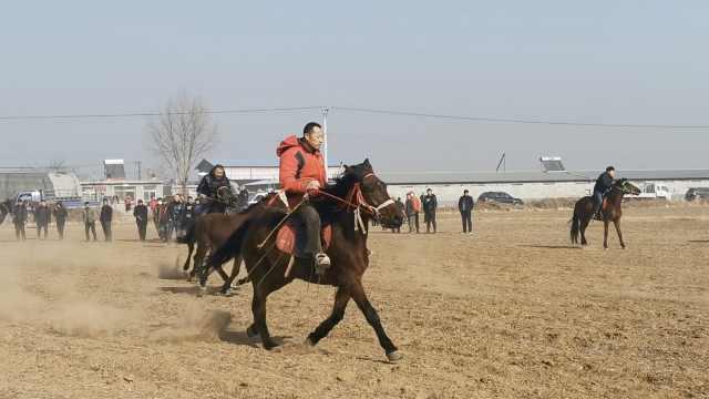东北乡亲田野里自发赛马,得了冠军啥也没有就图一乐