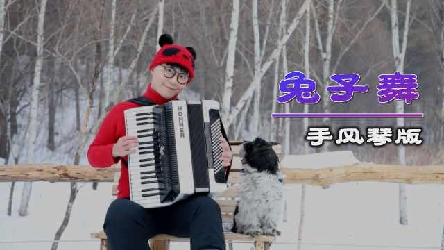 曾经火遍亚洲的《兔子舞》,用手风琴演绎也是别有一番风味!