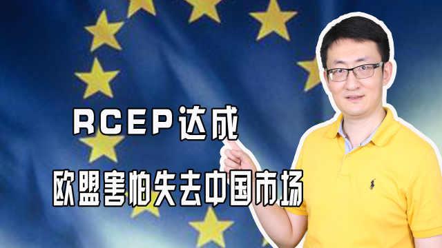 RCEP达成,欧盟害怕失去中国市场