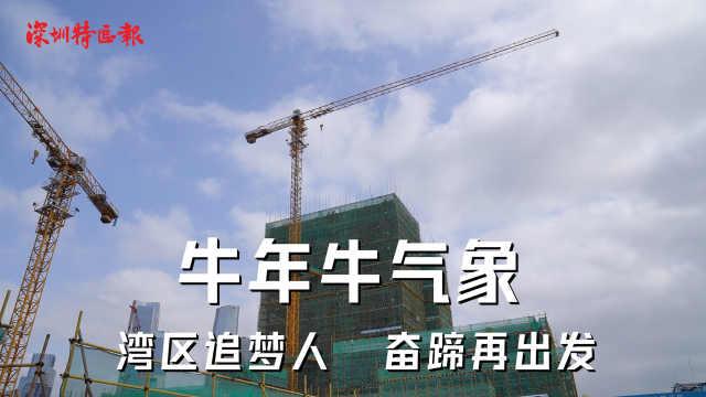 """新春开工""""汇""""!牛力牛气一起犇前海"""
