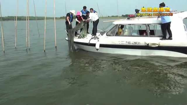 武汉市6条通江支流全面禁渔,警方同步启动专项行动