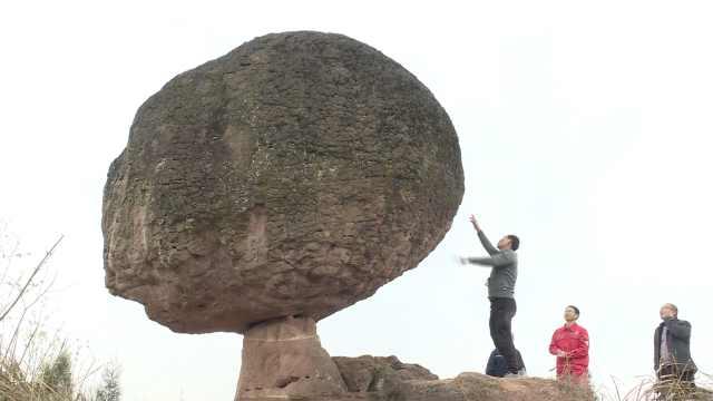 重庆合川一巨石立山顶似蘑菇花菜,