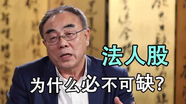 亲历股市风云之刘纪鹏:法人股为什么必不可缺?