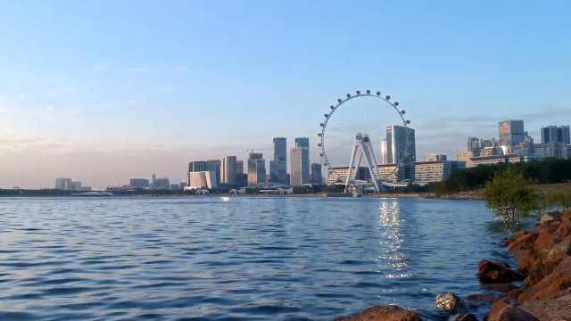 深圳网红公园频频出圈,你去过哪些?