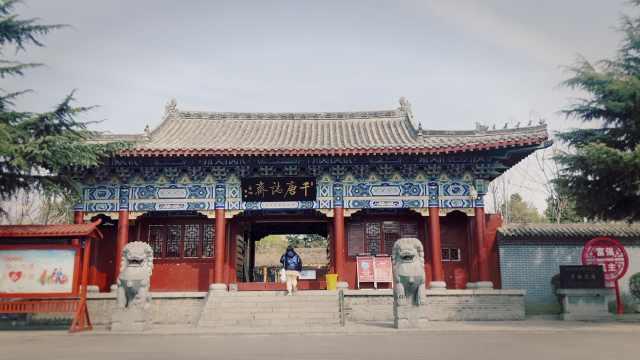清明,我在这村看了一千多块唐朝墓志铭,包括狄仁杰唯一真迹