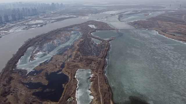 松花江干流哈尔滨段提前开江,最大冰排有足球场大小